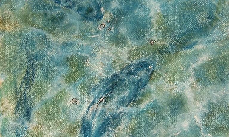 Vissen in de Haven (Marbella), pastel en conté op canvaspapier, 45,5 x 30,5 cm, 2013