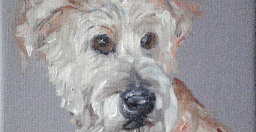 Portretje (Steve), olieverf op canvas, 15 x 15 cm, 2008