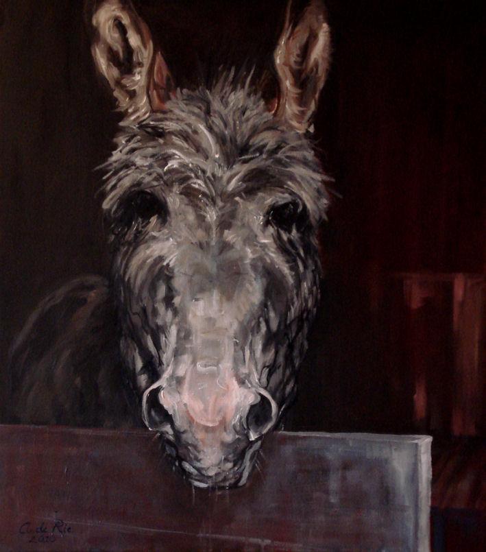 Ezeltje 2, olieverf op canvas, 60 x 50 cm, 2010, VERKOCHT