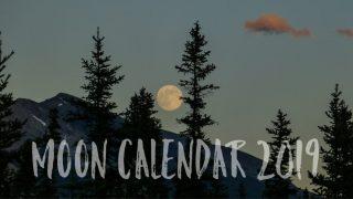 2019年の新月・満月カレンダー。日時と度数がわかります!新月と満月の影響を調べるのにお使いください。