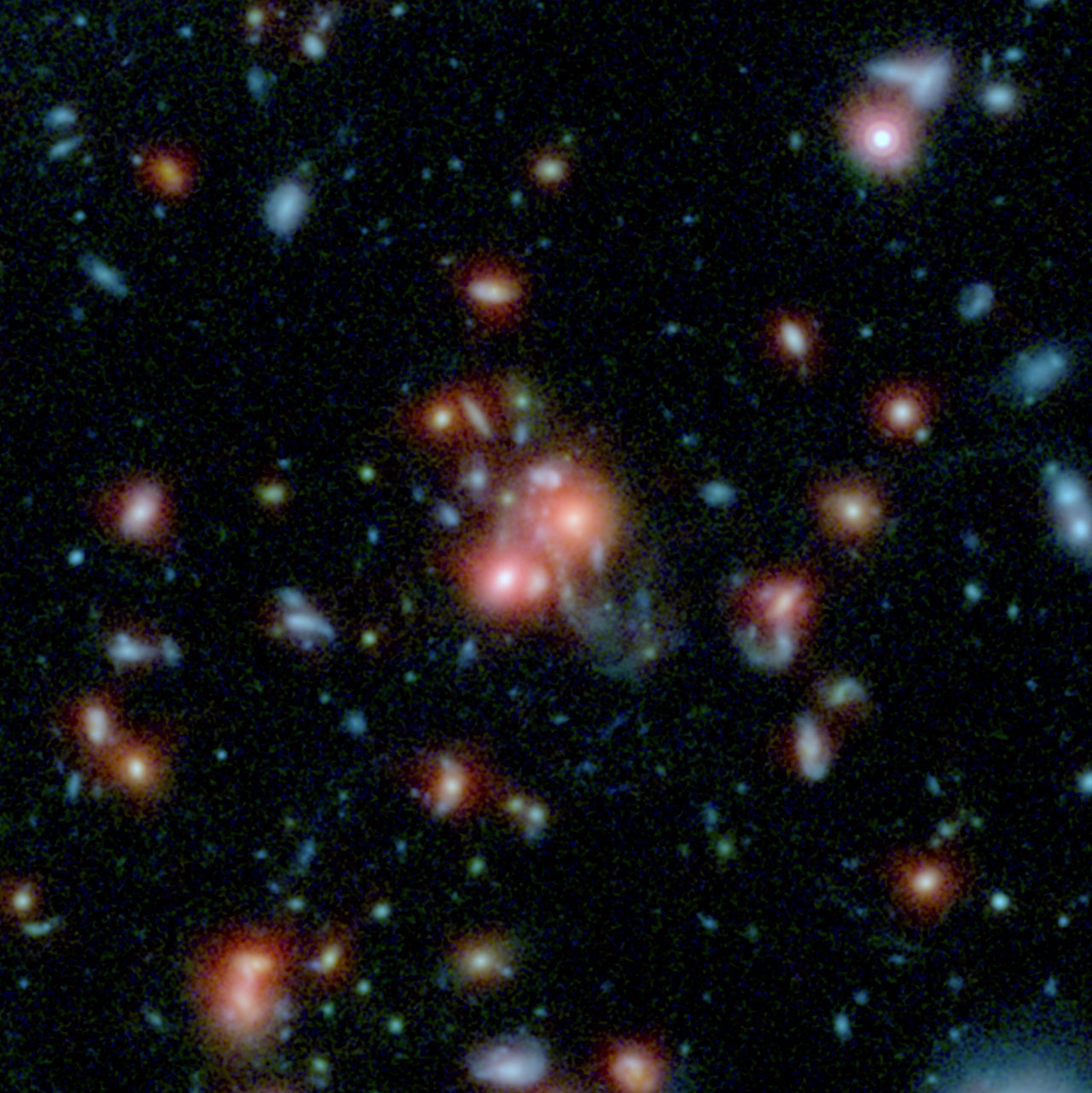 Massive cluster found with intense star formation by UCR astronomers