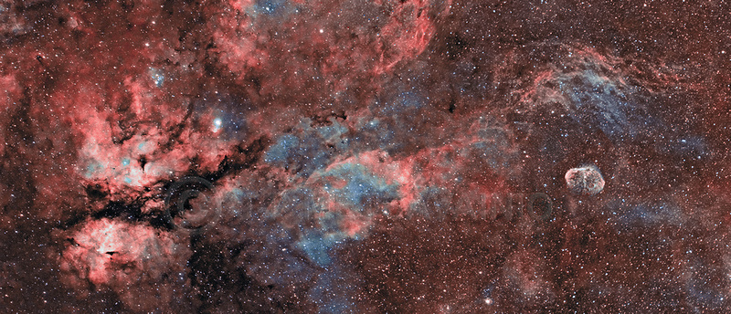 "J-P Metsavainio: Panoramic images &emdash; IC 1318, the ""Butterfly Nebula"" and the ""Crescent Nebula,"", NGC"