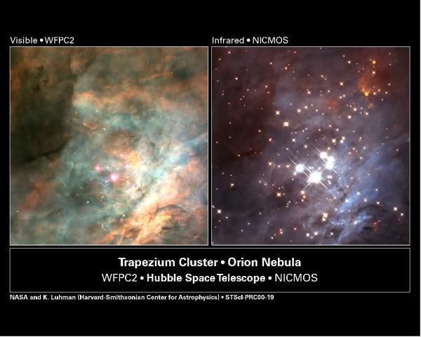 Orion Nebula | Astro Bruno Marshall