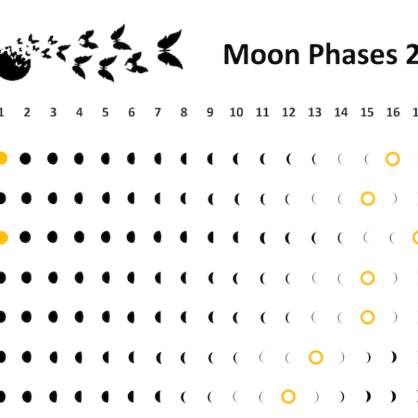 Moon Phases Wall Calendar 2018 Cropped