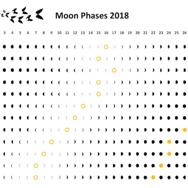 Moon Phases Wall Calendar 2018