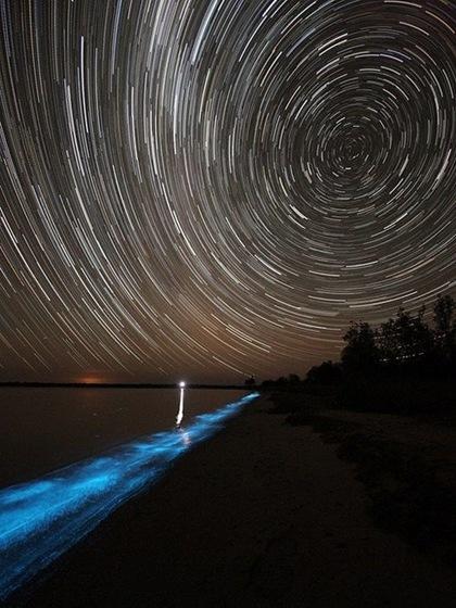Bioluminescent Lake