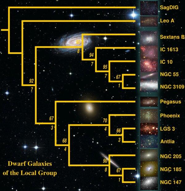 What is it? | Astrocladistics