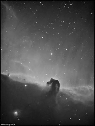 """Teleskop SkyWatcher Newton 8"""" (200/1000) SBIG ST2000XM - 13x1200s Ha bin x2 montaż Takahashi EM200. Koński Łeb w nieco mniejszym rozmiarze... Zdjęcie niestety przez przypadek zostało zrobione z bin x2, co odkryłem nad ranem po zebraniu przeszło 4,5 godziny materiału.... Ten obiekt to prawdziwa ikona i marzenie każdego astrofotografa. Może być fotografowana zarówno w szerszym polu pokazują całe bogactwo tego kompleksu i z efektownym dodatkiem jakim jest mgławica Flame (NGC 2024) jak również można go fotografować dłuższą ogniskową tak, że w kadrze będziemy mieli wyłącznie samą ciemną pyłową mgławicę B33. To drugi klejnot po kompleksie M42 w gwiazdozbiorze Oriona."""