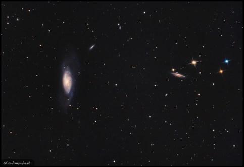 """Teleskop SkyWatcher Newton 8"""" (200/1000), zmodyfikowany 300D - 24x420s., montaż Takahashi EM200.M106 to piękna galaktyka otoczona wianuszkiem mniejszych. Ogniskowa 1000mm pozwoliła na pokazanie ustawionej do nas """"kantem"""" galaktyki NGC4217 (po prawej) oraz kilku mniejszych (NGC4248, 4226, 4231, 4232, PGC 39418, PGC 39615. M106 ma jasne jądro otoczone słabszymi ramionami, które dość trudno zarejestrować i ładnie pokazać w obróbce bez przepalenia środkowej jasnej części galaktyki. Można powiedzieć, że jest to piękny obiekt na różne ogniskowe. Jeżeli wybierzemy szersze pole (np. ogniskową 500mm ) dookoła zarejestruję się spora grupa innych ciekawych galaktyk. Stosując ogniskowe powyżej metra będziemy mogli pokazać ciekawy i dynamiczny środek galaktyki, oraz słabsze struktury w jej zewnętrznych częściach."""