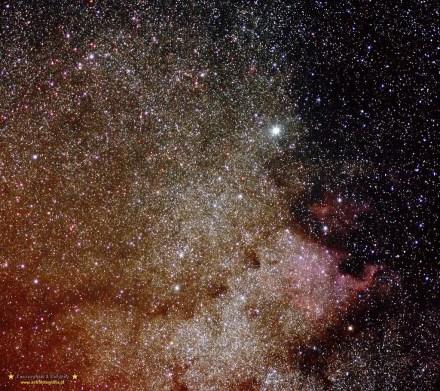 Ameryka NGC7000 11x 120 sekund ISO800 Eos 300D +EF 100/2,8 Macro przy przesłonie 3,5. Na EQ3-2 montażu Soligora.