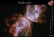 La Nebulosa Farfalla (detta anche NGC 6302) è una nebulosa planetaria visibile nella costellazione dello Scorpione a più di 3000 anni luce da noi. Le nebulose planetarie, a differenza di quello che suggerisce il loro nome dovuto a ragioni storiche, non hanno niente a che fare con i pianeti: si tratta, infatti, di oggetti formati a seguito dell'espulsione da parte di una stella del suo involucro più esterno, che avviene in una particolare fase della sua vita.(Credit: NASA, ESA, and the Hubble SM4 ERO Team)
