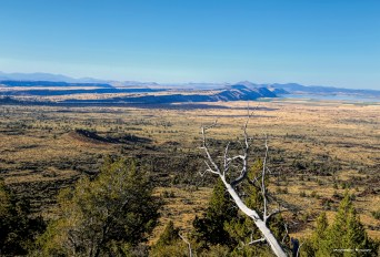 Looking North from Schonchin Butte