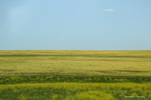 Nebraska plains