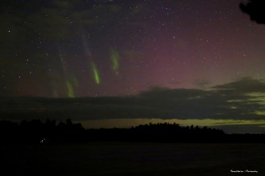 Green fingers of the Northern Lights