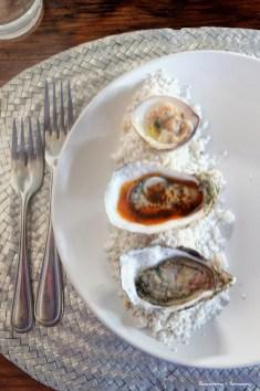 Oysters at the Manzanilla-Perfection
