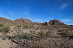 Now, this is more like it-Kofa Wildlife Refuge-King Road