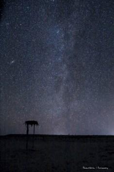 Under the Milky Way tonight..