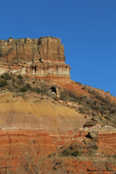 The view of the cliffs from Hackberry campground