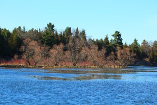 Old Ausable Channel