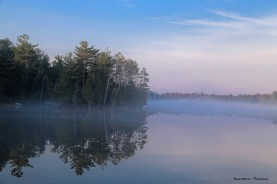 Fog on Otty Lake