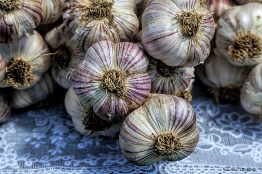 Garlic Festival!
