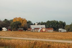 Brightly painted barns