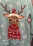 Stylin reindeer