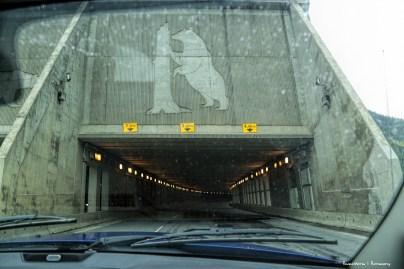 Bear Tunnel:)