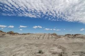 A alien landscape