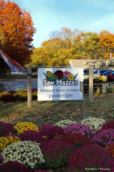 Sam Mazza's Harvest Hosts