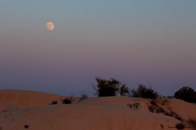 Spectacular Moonrise