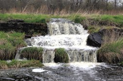 Plum Hollow Creek