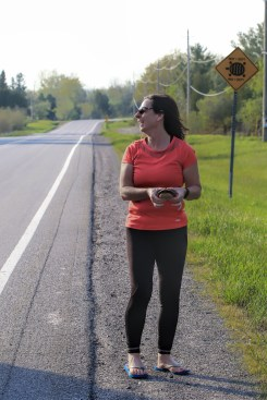Our friend Joanne recues a painted turtle from the road