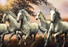 Seven Running horse Vastu Painting Astrology
