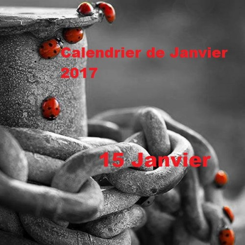 Calendrier Janvier 2017 : 15 Janvier