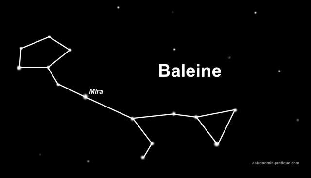 constellation de la baleine