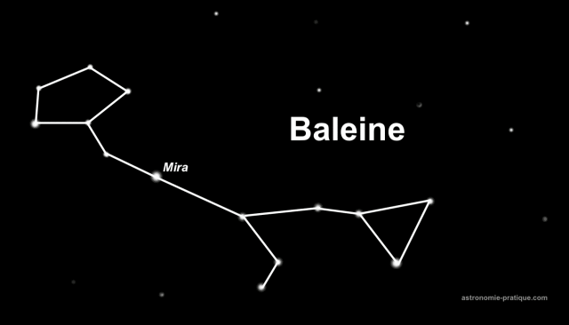 constellation de la baleine