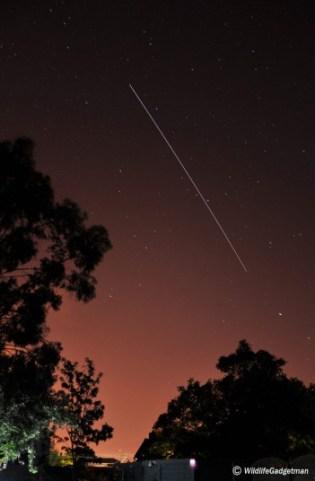 A Perseid Meteor