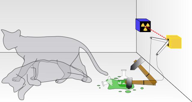 Um gato, junto com um frasco contendo veneno, é colocado numa caixa. Se um contador Geiger detectar radiação então o frasco é quebrado, libertando o veneno que mata o gato. A mecânica quântica sugere que depois de um tempo o gato está simultaneamente vivo e morto. Quando se olha para dentro da caixa, apenas se vê o gato ou vivo ou morto, não uma mistura de vivo e morto.