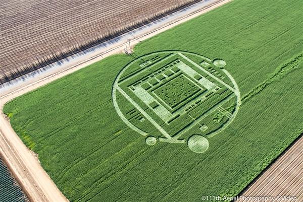 131230-crop-circles-hmed-728p.photoblog600