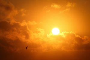 zondag, activiteiten, kleuren van de zon