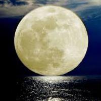 horoscope moon in pisces meena rashi kundli