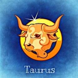Taurus vrishabha horoscope kundli