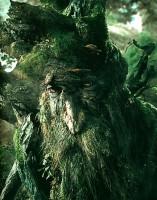 treebeard_1-157x200