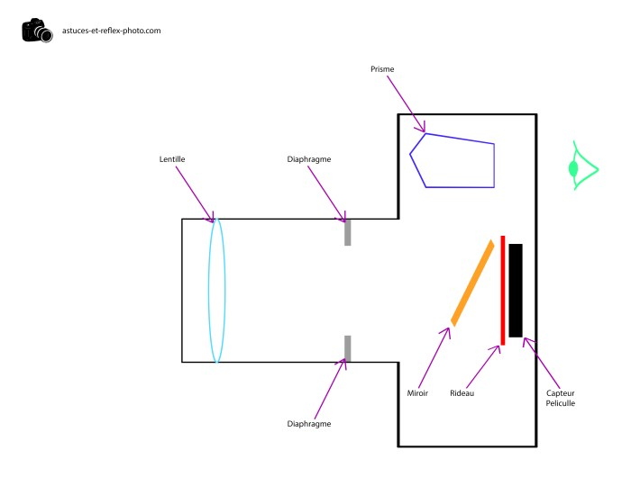 Schéma de fonctionnement d'un appareil photo numérique reflex