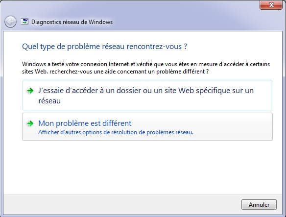diagnostics réseaux Windows