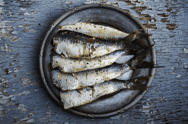 hal szardínia