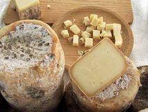 queso de los beyos