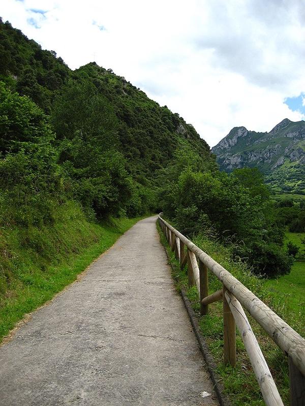 la ruta del oso asturias camino