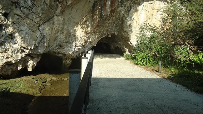 cueva del tito bustillo en ribadesella